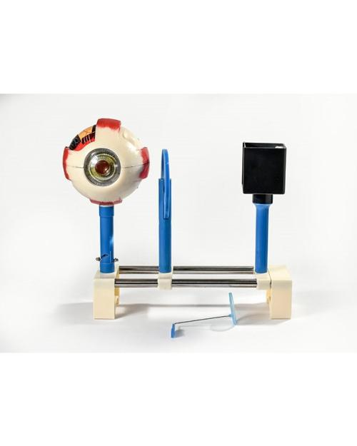 БМ013 - Модел за демонстрација на функционирањето на човечкото око