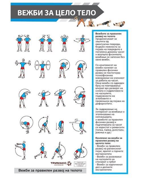 СП076 - Постер вежби за цело тело